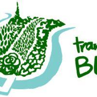 Transition Bern